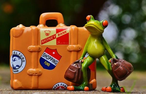frog-991307_640