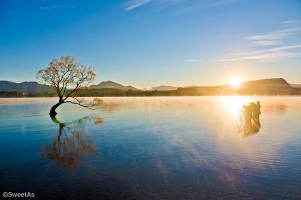 ニュージーランドの絶景を見に行こう。日本全国で写真展を開催!