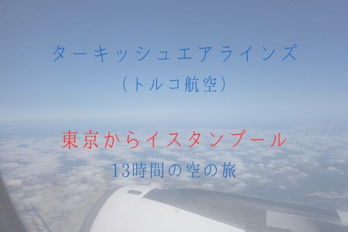 ターキッシュエアラインズ(トルコ航空)で東京からイスタンブールへ。空の旅は快適だった